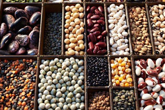 孕妇不能吃什么豆类食物 孕妇孕期饮食注意事项