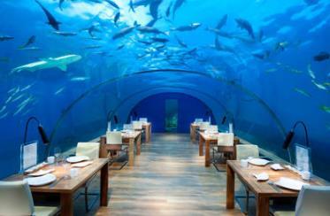 全球三大奇异餐厅 Ithaa是世界上第一家全玻璃的海底餐厅