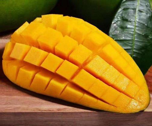 青芒果硬的能直接吃吗 怎么辨别大青芒果熟没熟 催熟青芒果妙招