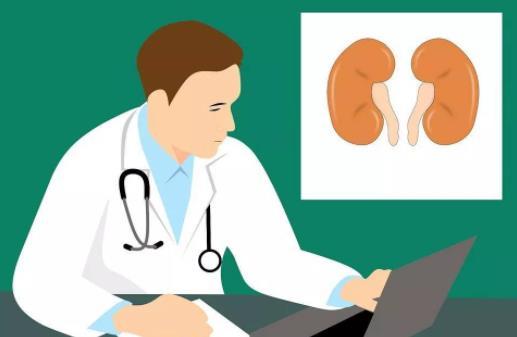 慢性肾炎的症状是什么?慢性肾炎怎么办?如何预防慢性肾炎
