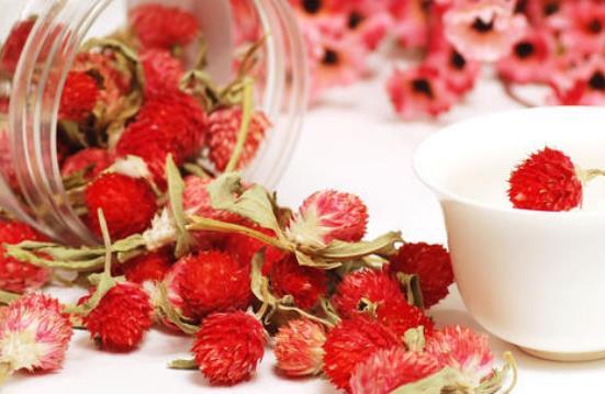 红巧梅花茶的功效与作用有哪些,喝红巧梅花茶的禁忌有哪些?