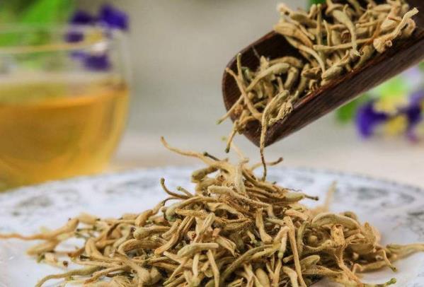 金银花茶的功效及作用有哪些,喝金银花茶的禁忌有哪些?