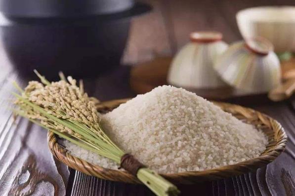 大米的营养价值及食用功效,大米在生活中有哪些作用?