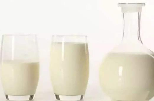 羊奶和牛奶有哪些区别?喝羊奶有哪些好处(营养价值)