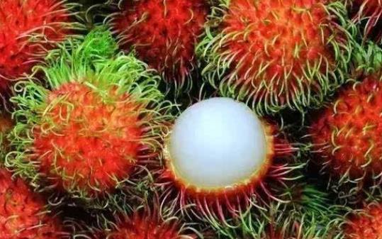 怎么选购红毛丹?红毛丹里的核可以吃吗