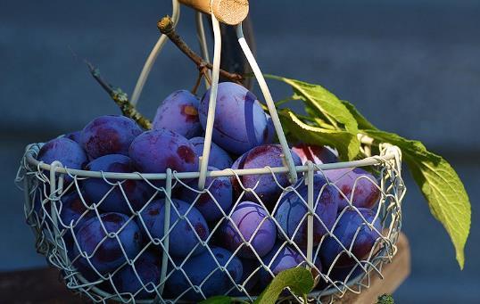 吃葡萄皮有哪些好处?葡萄皮有哪些营养价值