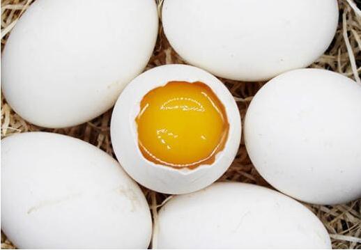 怀孕几个月吃鹅蛋最佳?